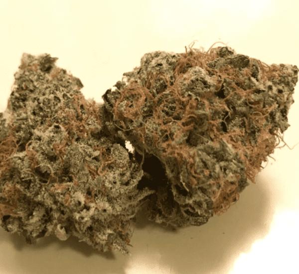 Mail Order Animal Cookies Cannabis Online