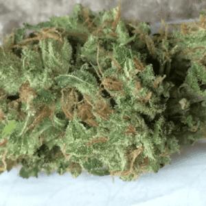 Mail Order Jillybean Cannabis Online