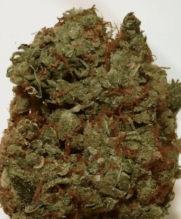 Mail Order Lemon Haze Cannabis Strain