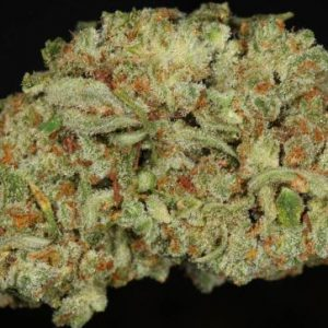 Mail Order TrainWreck Marijuana Strain